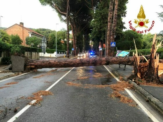 Maltempo a Firenze: pesanti danni in città e sulle colline